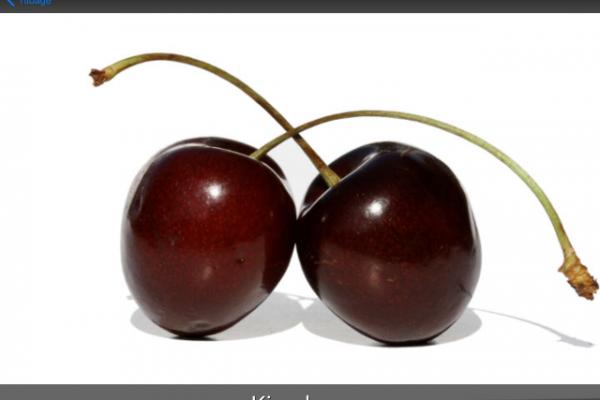 Billedbog med frugt